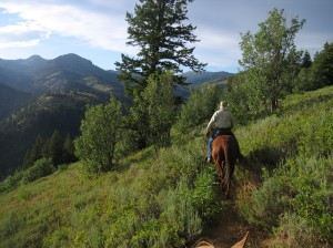 Horseback riding on the Jardine Juniper Trail in Logan Canyon. Photo by Kate Rouse DuHadway.